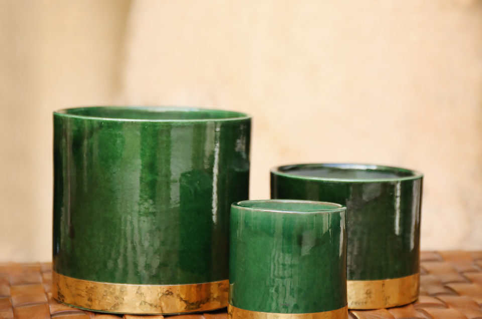 CP   Collection Green Gold