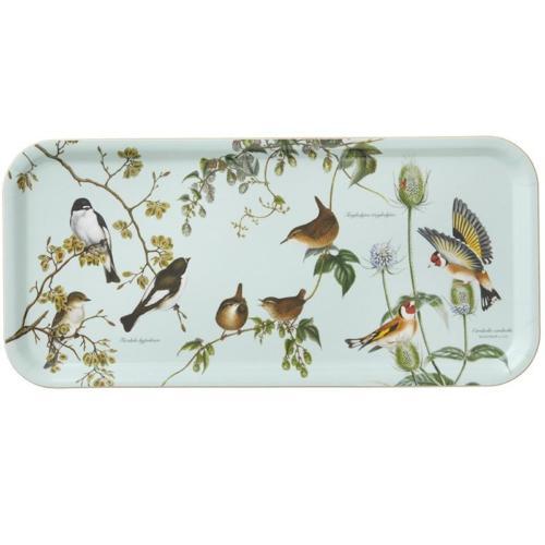 Plateau oiseaux